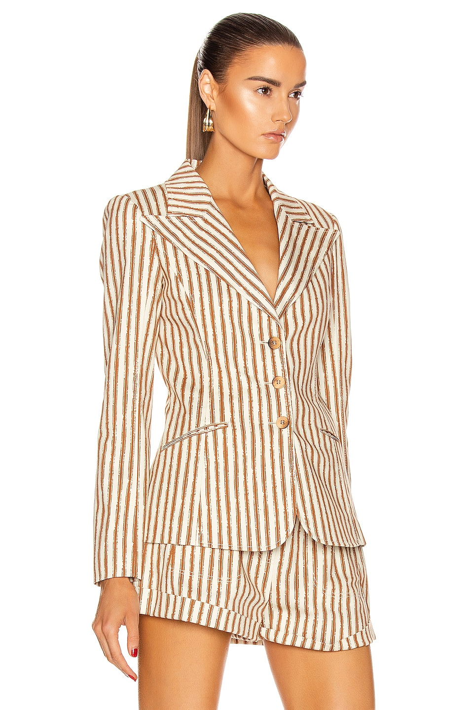 Image 2 of ALBERTA FERRETTI Tailored Stripe Blazer in Brown & White