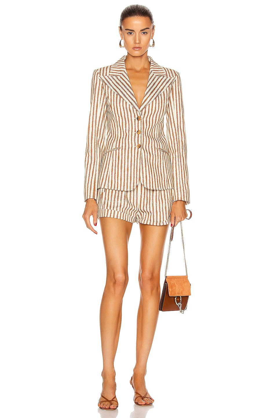 Image 4 of ALBERTA FERRETTI Tailored Stripe Blazer in Brown & White