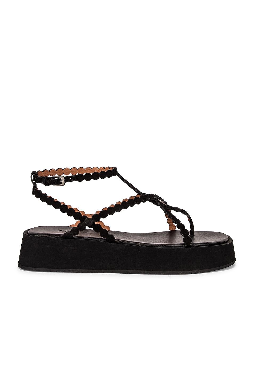 Image 1 of ALAÏA Chamois Minimal Sandals in Noir