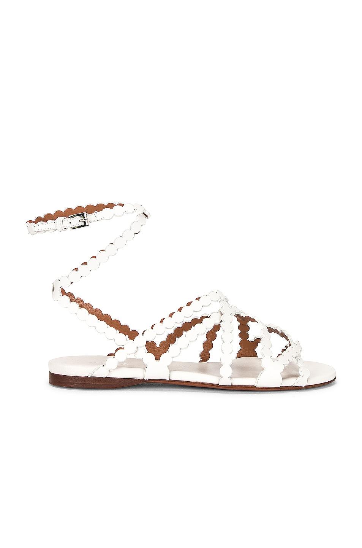 Image 1 of ALAÏA Veau Minimal Sandals in Blanc Casse