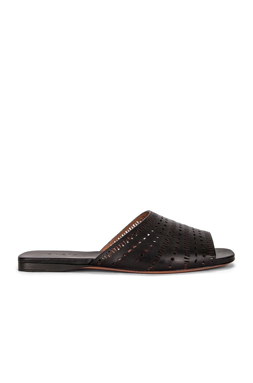 Image 1 of ALAÏA Vienne Leather Slides in Noir