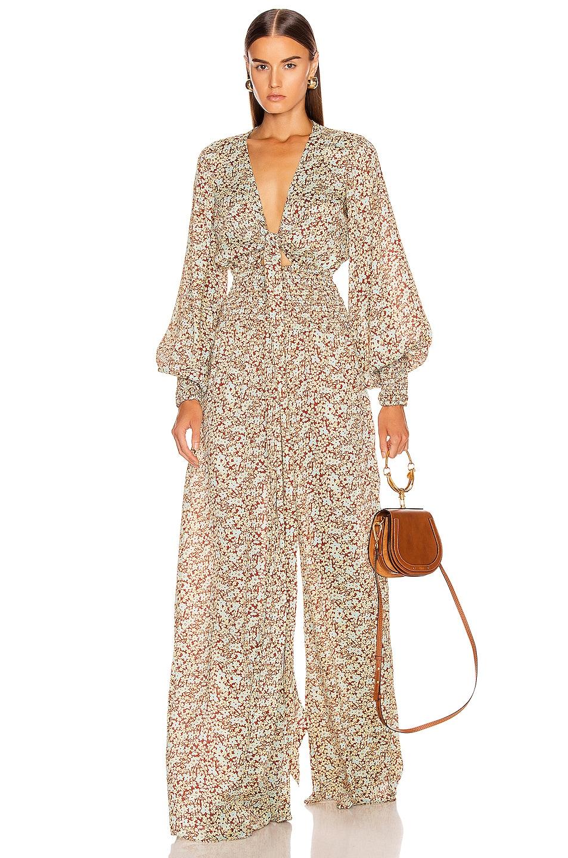 Image 1 of Alexis Esperanza Jumpsuit in Sienna Floral