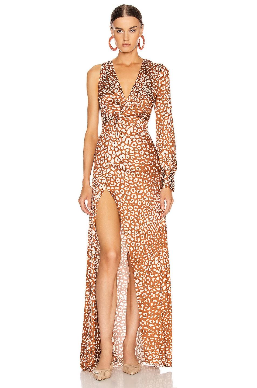 Image 1 of Alexis Kasadee Dress in Sienna Leopard