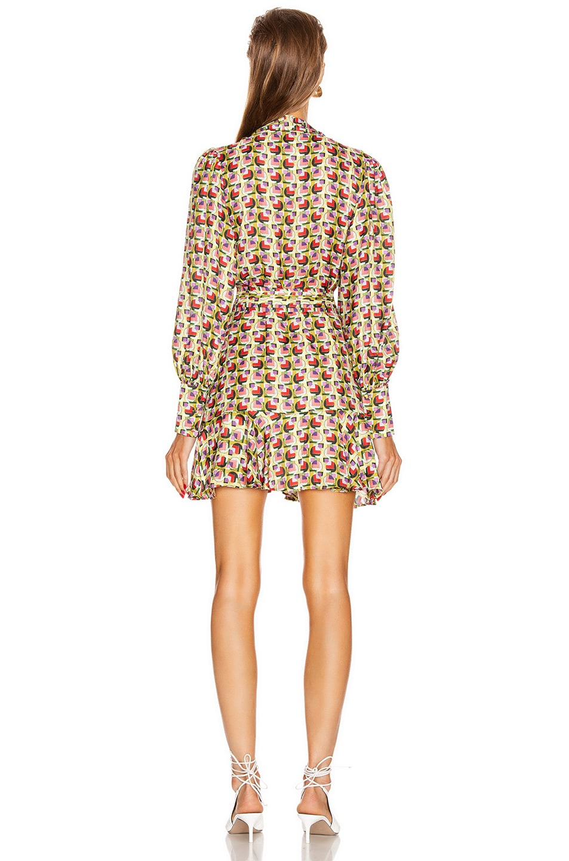 Image 4 of Alexis Mirene Dress in Bronze Geo