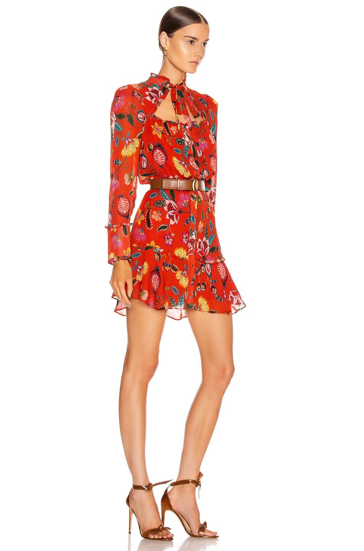 Image 2 of Alexis Morgana Dress in Auburn Nouveau