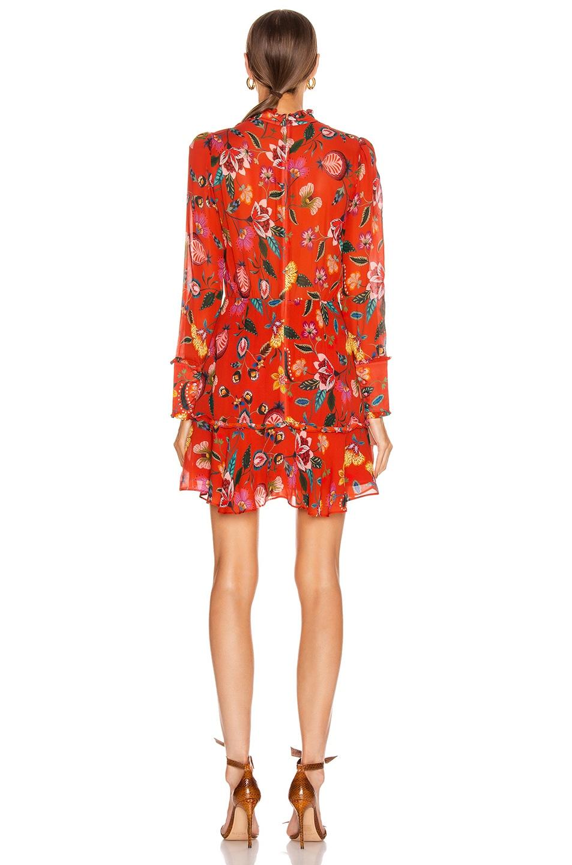Image 3 of Alexis Morgana Dress in Auburn Nouveau