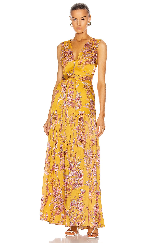 Image 1 of Alexis Belaya Dress in Tuscan Palm