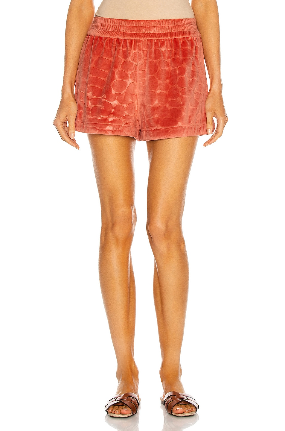 Image 1 of Alexis Matin Short in Coral