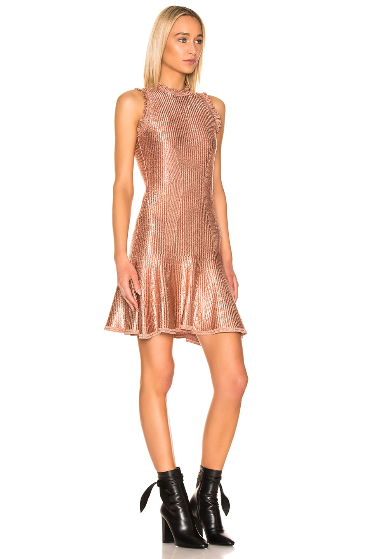 Image 2 of Alexander McQueen Mini Dress in Cowrie