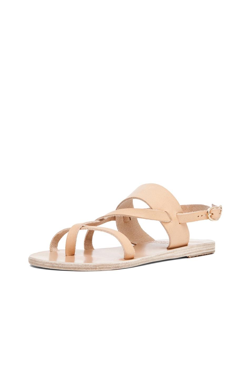 Image 2 of Ancient Greek Sandals Alethea Calfskin Leather Sandals in Natural