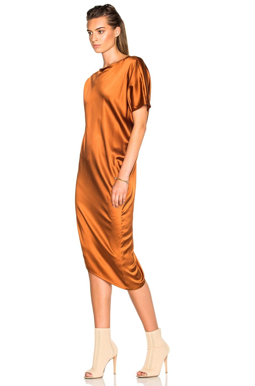 Image 2 of Ann Demeulemeester Drape Dress in Rusty