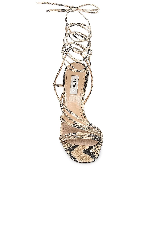 Image 4 of ATTICO Baby Python Printed Heel in Nude