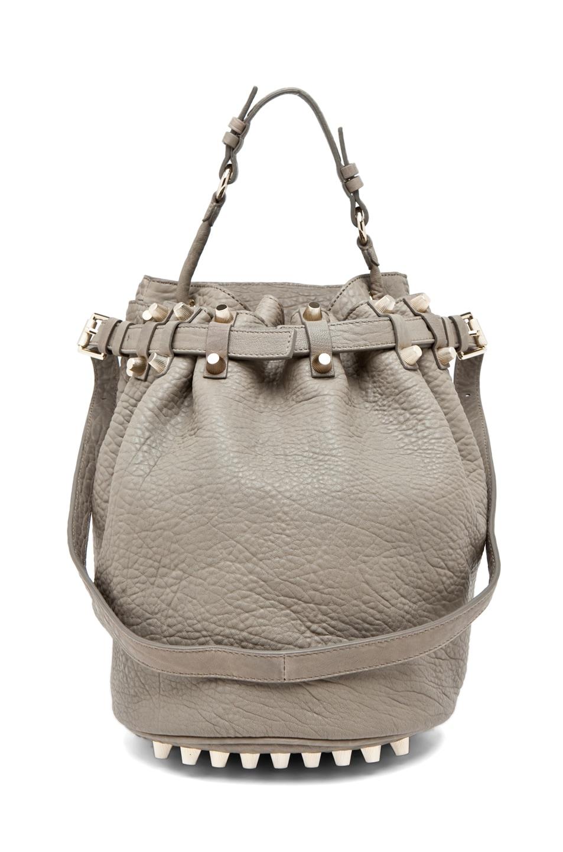 Image 1 of Alexander Wang Diego Bucket Bag in Granite