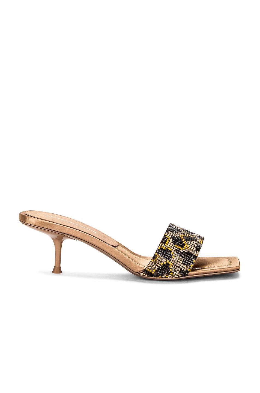 Image 1 of Alexander Wang Jessie Leopard Crystal Sandal in Leopard