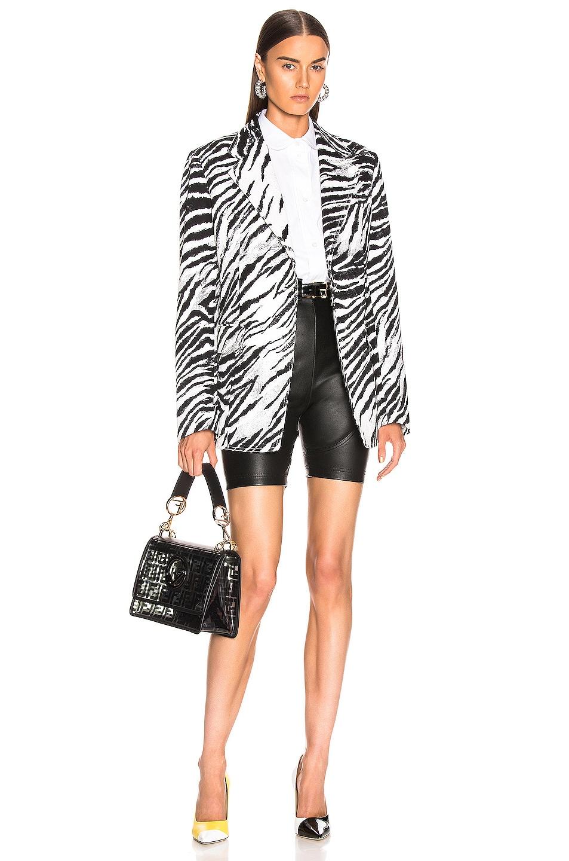 Image 5 of BROGNANO Zebra Blazer in Black & White