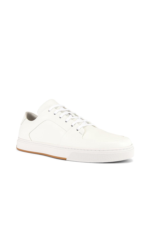 Image 1 of Bottega Veneta Low Top Sneaker in Bianco