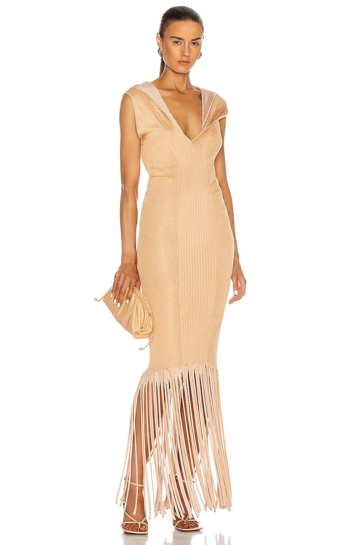 Image 1 of Bottega Veneta Rib Fringe Dress in Bandage