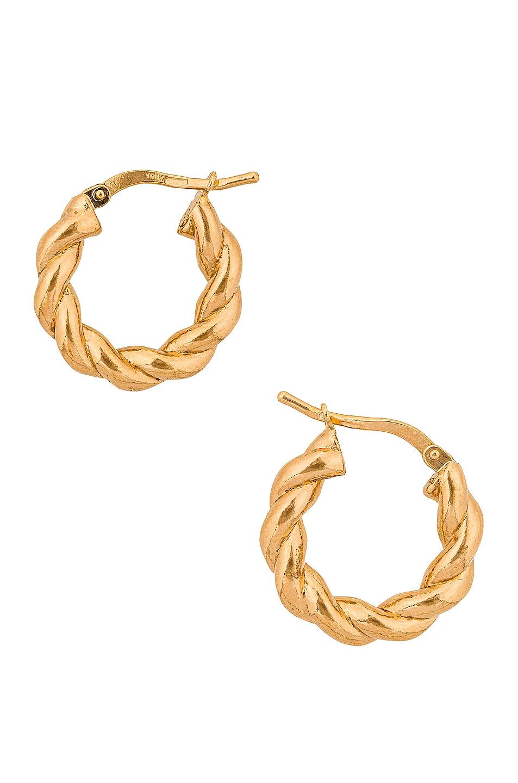 Image 1 of Bottega Veneta Twisted Hoop Earrings in Gold