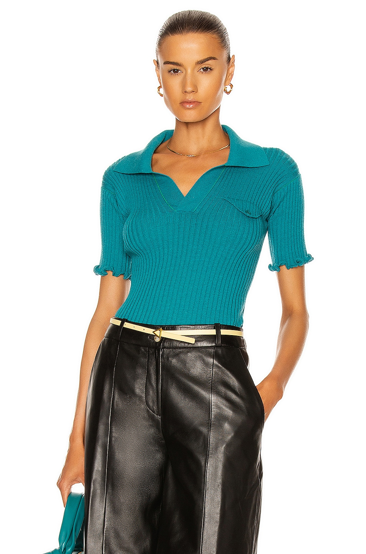 Image 1 of Bottega Veneta Wool Lightweight Rib Polo Top in Duck Green