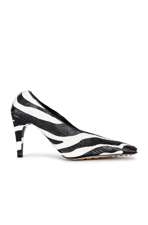 Image 1 of Bottega Veneta Square Toe Heels in White Zebra