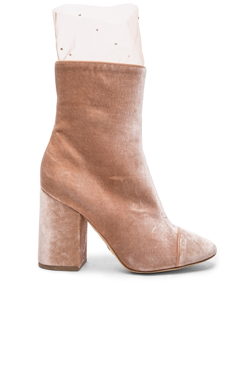Image 1 of Brother Vellies FWRD Exclusive Velvet Bianca Boots With Swarovski Sock in Pale Velvet