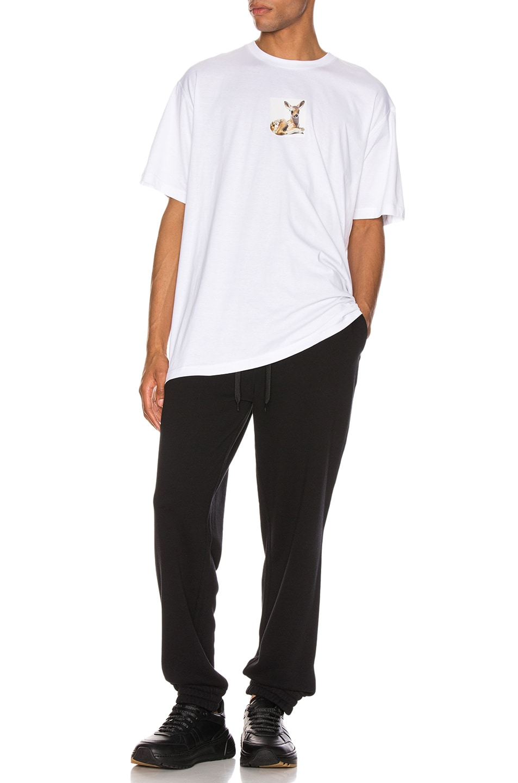 Image 4 of Burberry Sweatpants in Black
