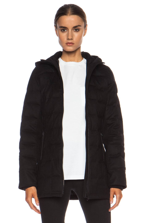 canada goose branta wool