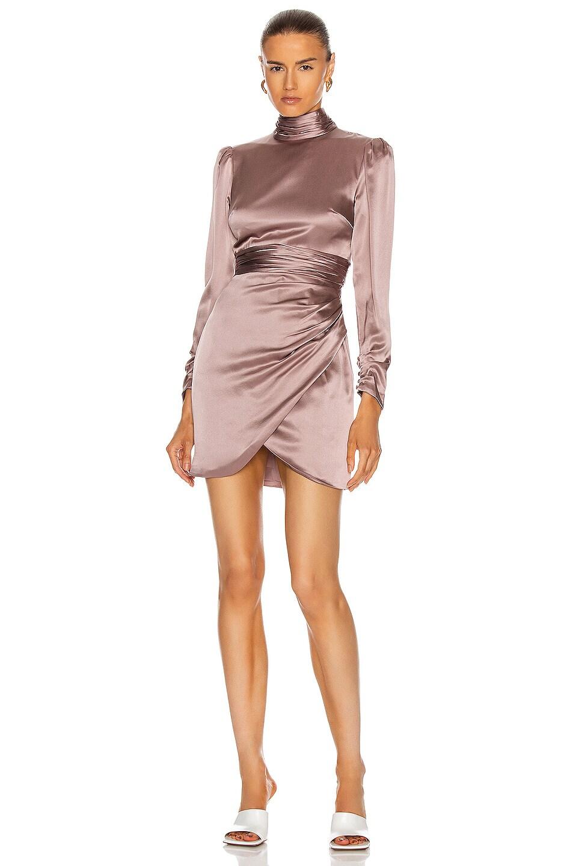 Image 1 of Cinq a Sept Nancy Dress in Desert Rose