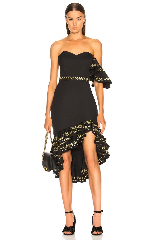 Image 1 of Caroline Constas Cam Dress in Black & Gold