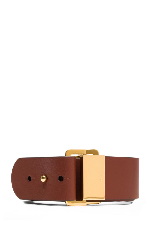 Image 1 of Chloe Sliders Calfskin Leather Belt in Brownie Brown