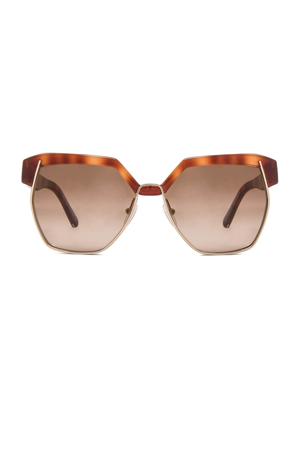 Image 1 of Chloe Dafne Sunglasses in Light Havana