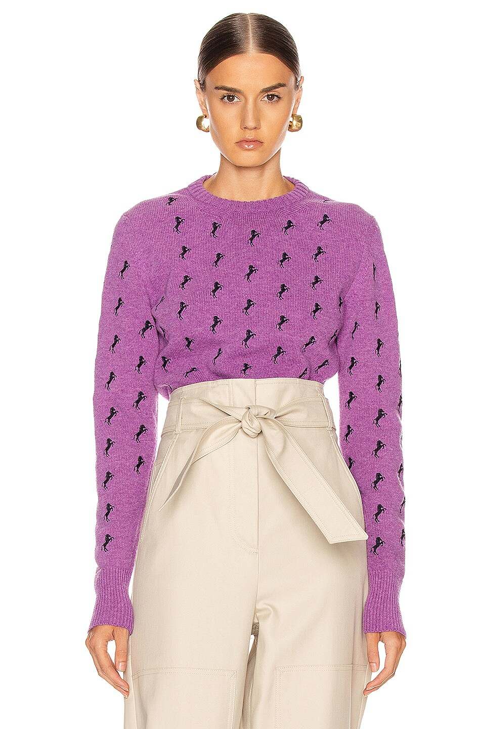 Image 1 of Chloe Embroidered Horse Tie Sweater in Sparkling Purple