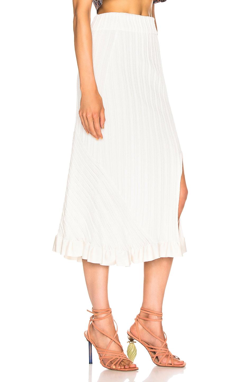 Image 2 of Chloe Ruffle Midi Skirt in Dusty White