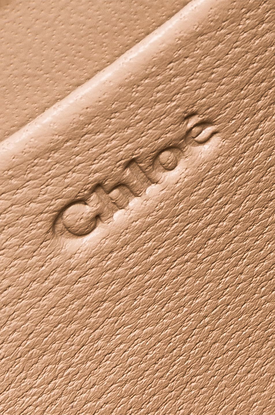 Image 7 of Chloe Small Nile Leather Minaudiere in Dark Ochre