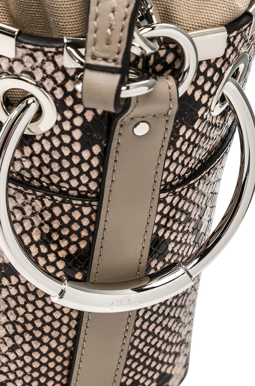 Image 8 of Chloe Mini Roy Python Print Leather Bucket Bag in Eternal Grey