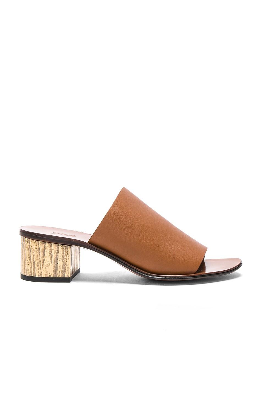 Chloé Qassie Semi-Shiny Calf Leather Mules in . K9gwyEb