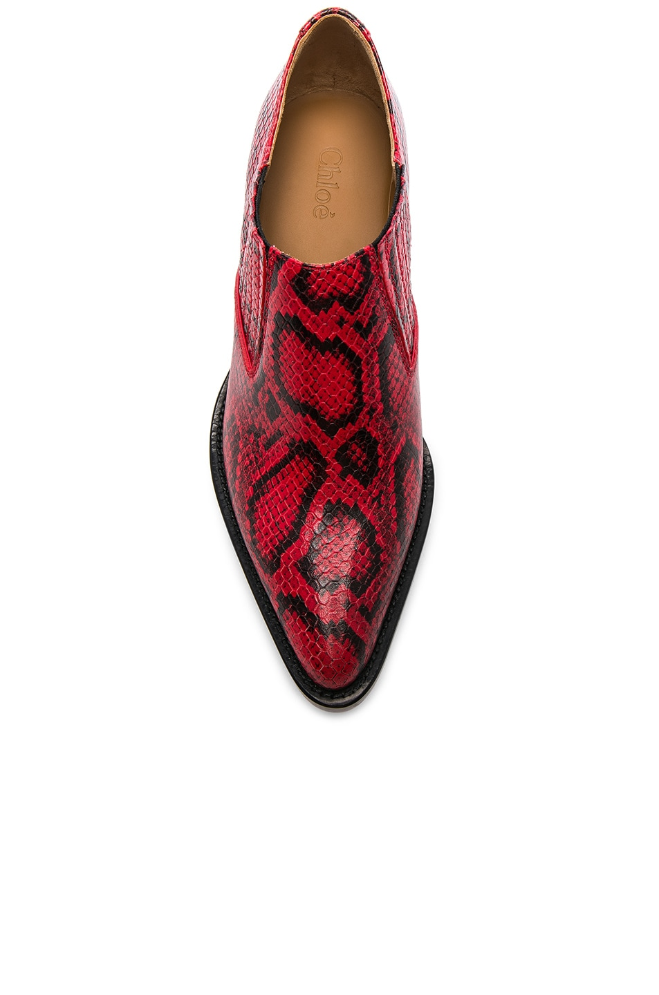 Image 4 of Chloe Rylee Python Print Leather Ankle Boots in Gypsy Red
