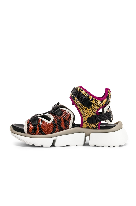 Image 5 of Chloe Platform Sandals in September Sun