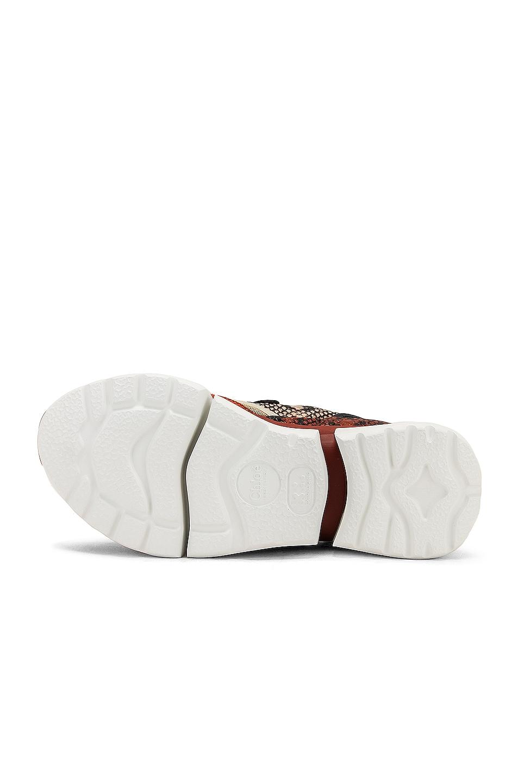 Image 6 of Chloe Platform Sneakers in Eternal Grey