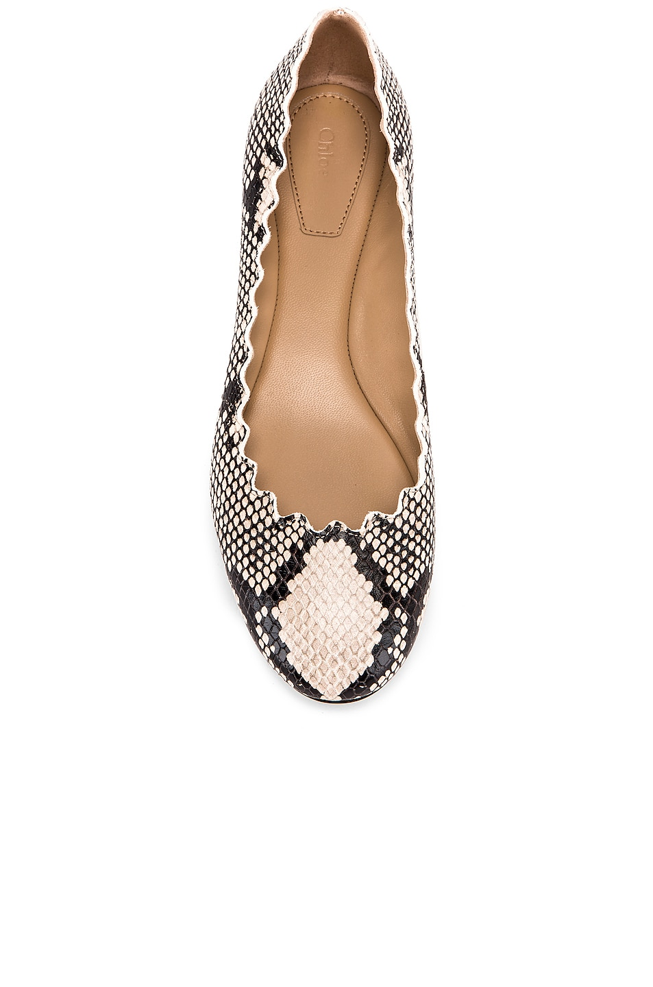 Image 4 of Chloe Python Print Flats in Eternal Grey