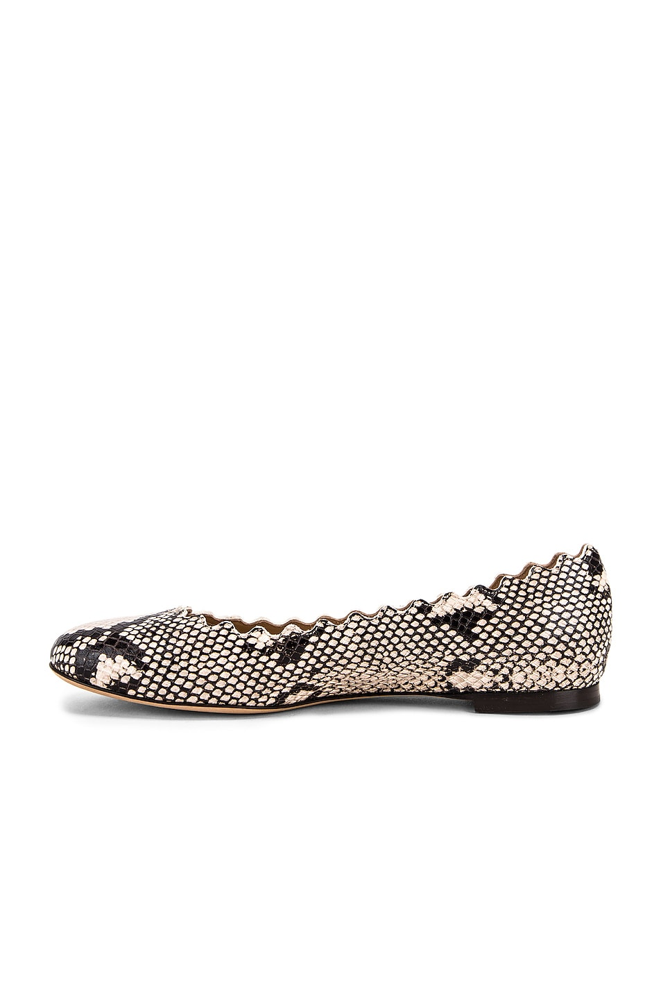 Image 5 of Chloe Python Print Flats in Eternal Grey