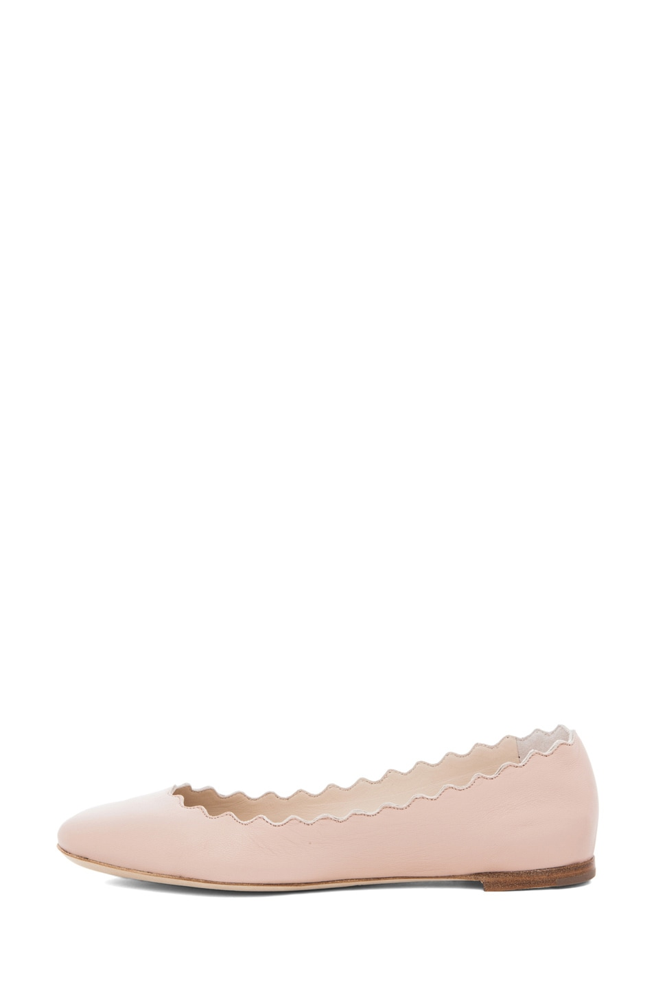 Image 1 of Chloe Lauren Scalloped Flat in Cipria