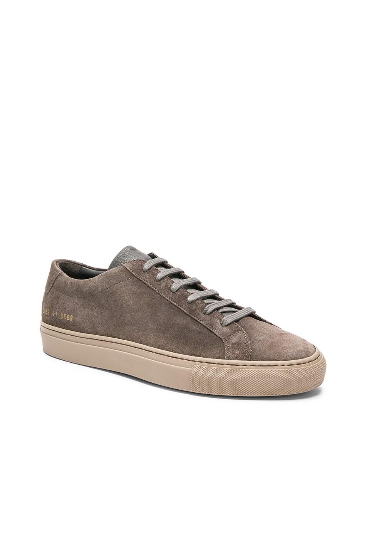 Grey Original Achilles low suede sneakers Common Projects c072KEa6