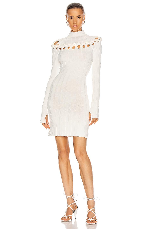 Image 1 of Dion Lee Braid Skivvy Mini Dress in Ivory