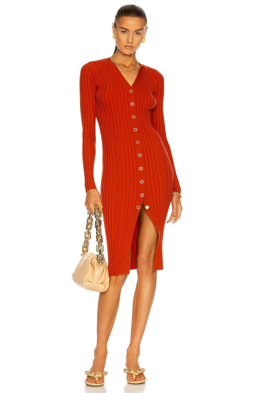 Image 1 of Dion Lee Merino Cardigan Dress in Rust