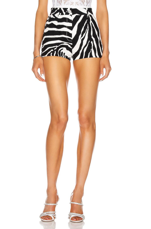 Image 1 of Dolce & Gabbana Tailored Short in Zebra