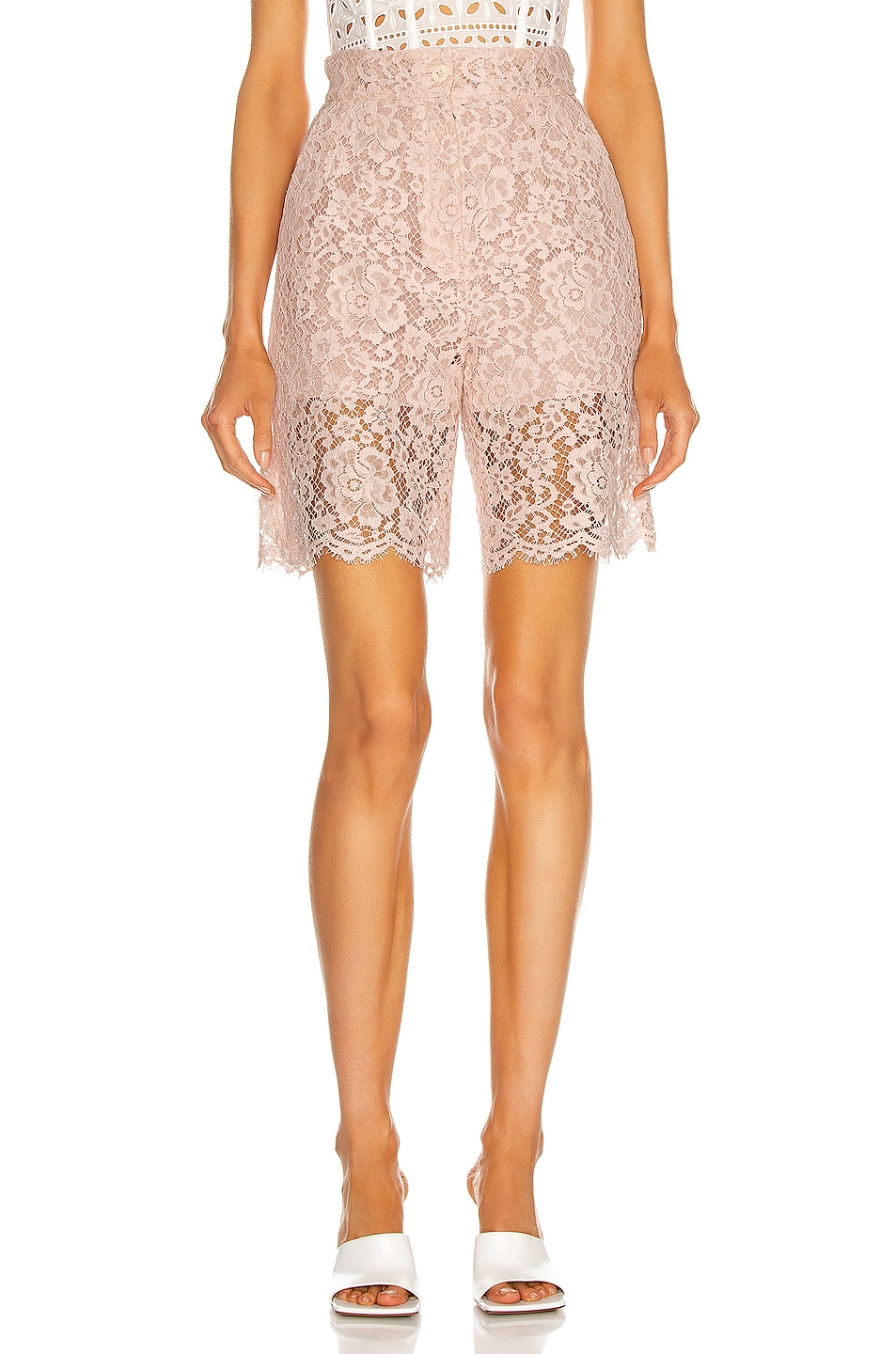 Image 1 of Dolce & Gabbana Lace Short in Light Powder