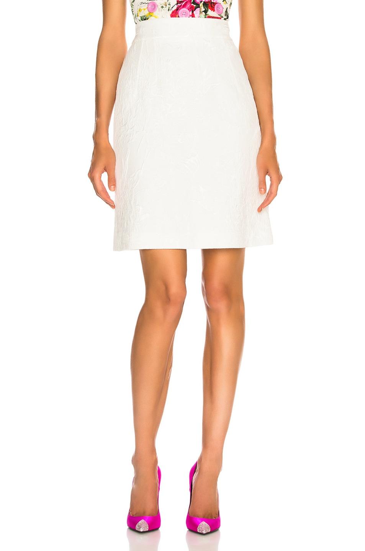 Image 1 of Dolce & Gabbana Jacquard Mini Skirt in White