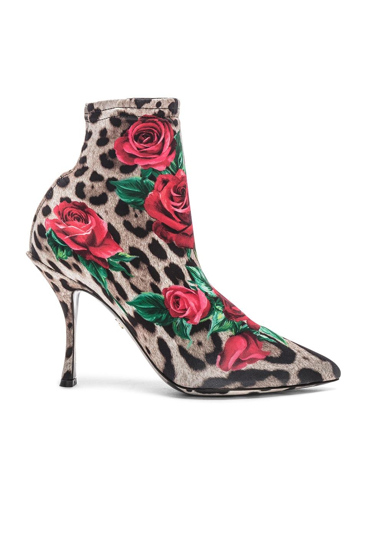 Image 1 of Dolce & Gabbana Leo Rose Print Sock Booties in Cheetah
