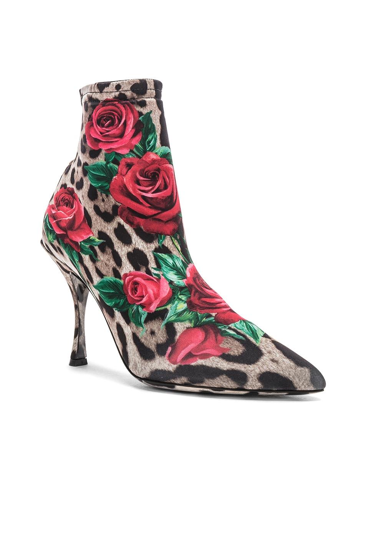 Image 2 of Dolce & Gabbana Leo Rose Print Sock Booties in Cheetah